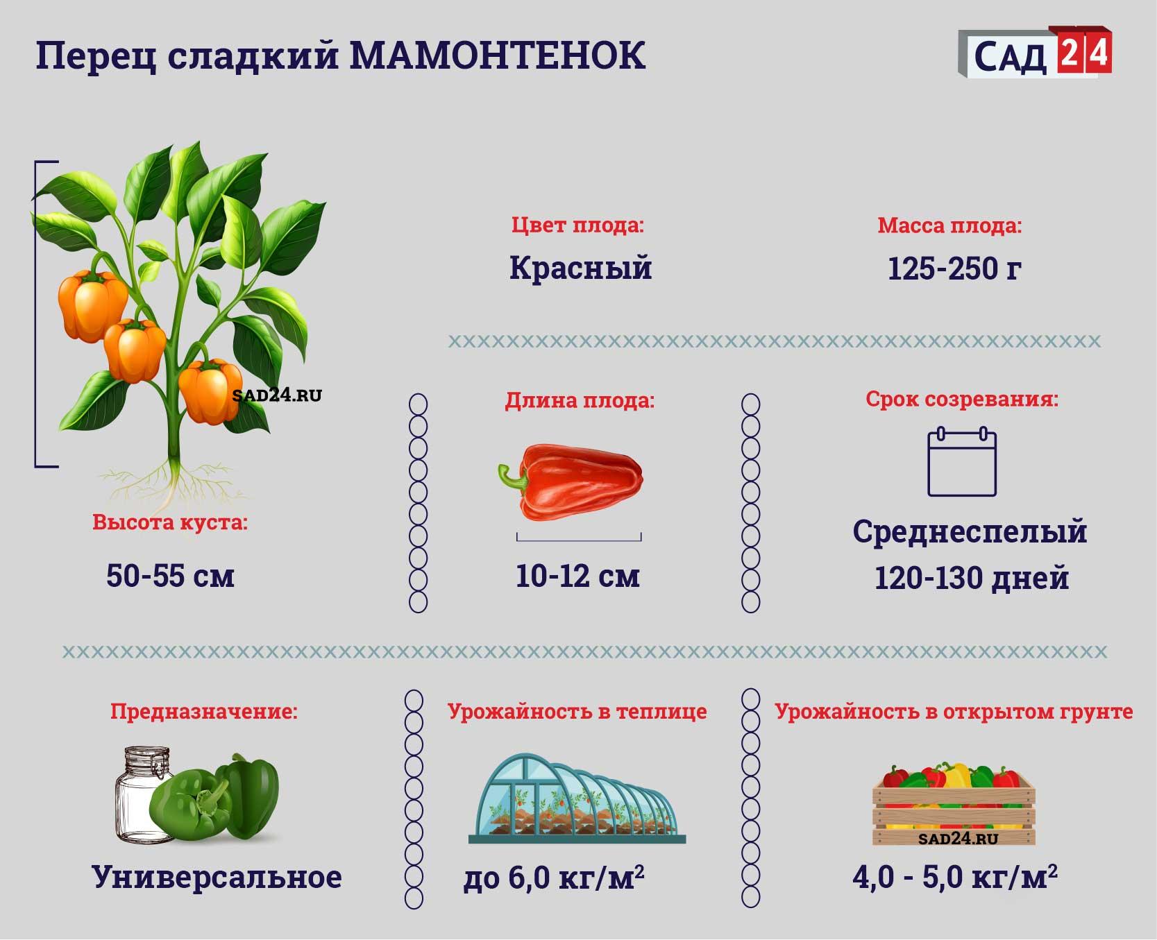 Мамонтенок - https://sad24.ru/