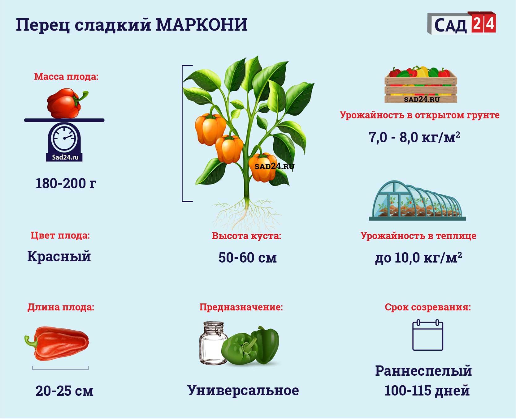 Маркони - https://sad24.ru