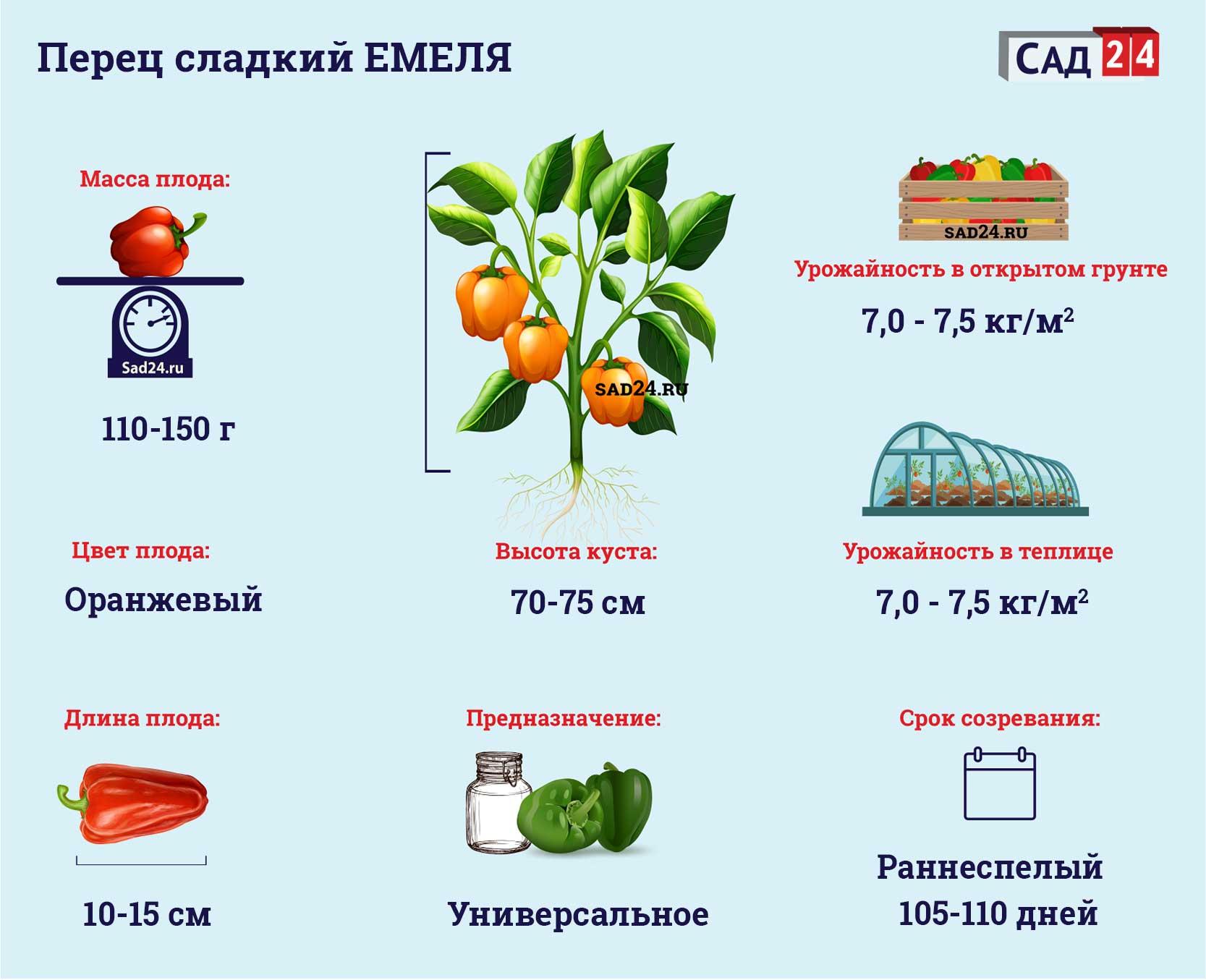 Емеля - https://sad24.ru