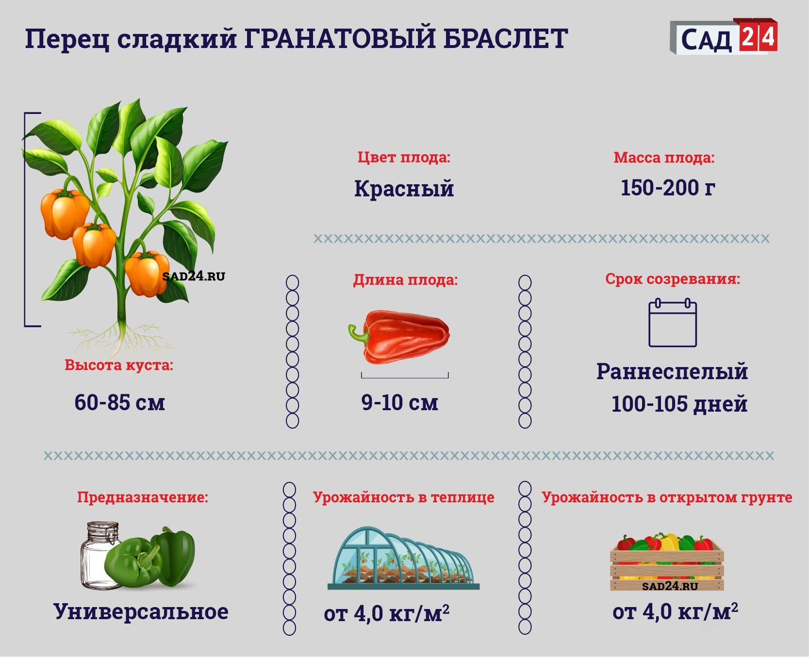 Гранатовый браслет - https://sad24.ru