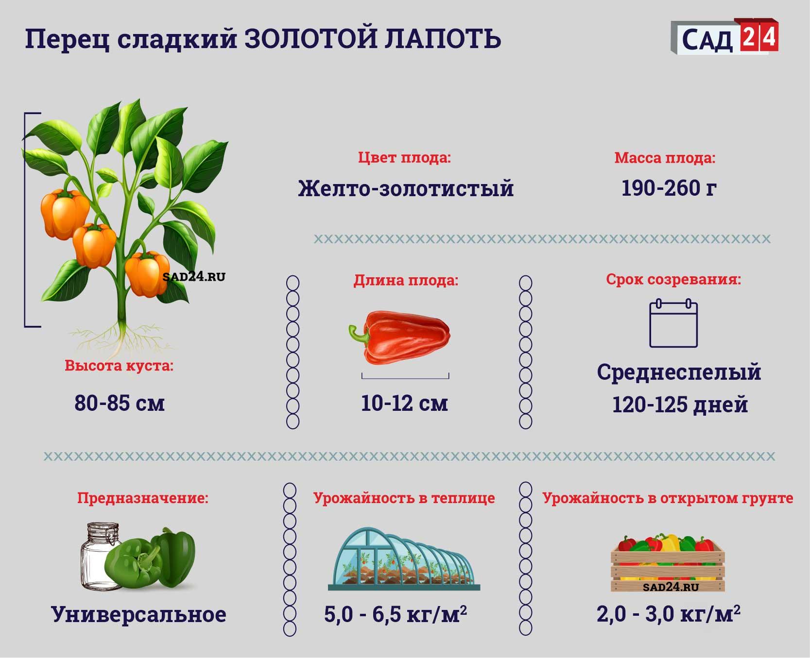 Золотой Лапоть - https://sad24.ru/