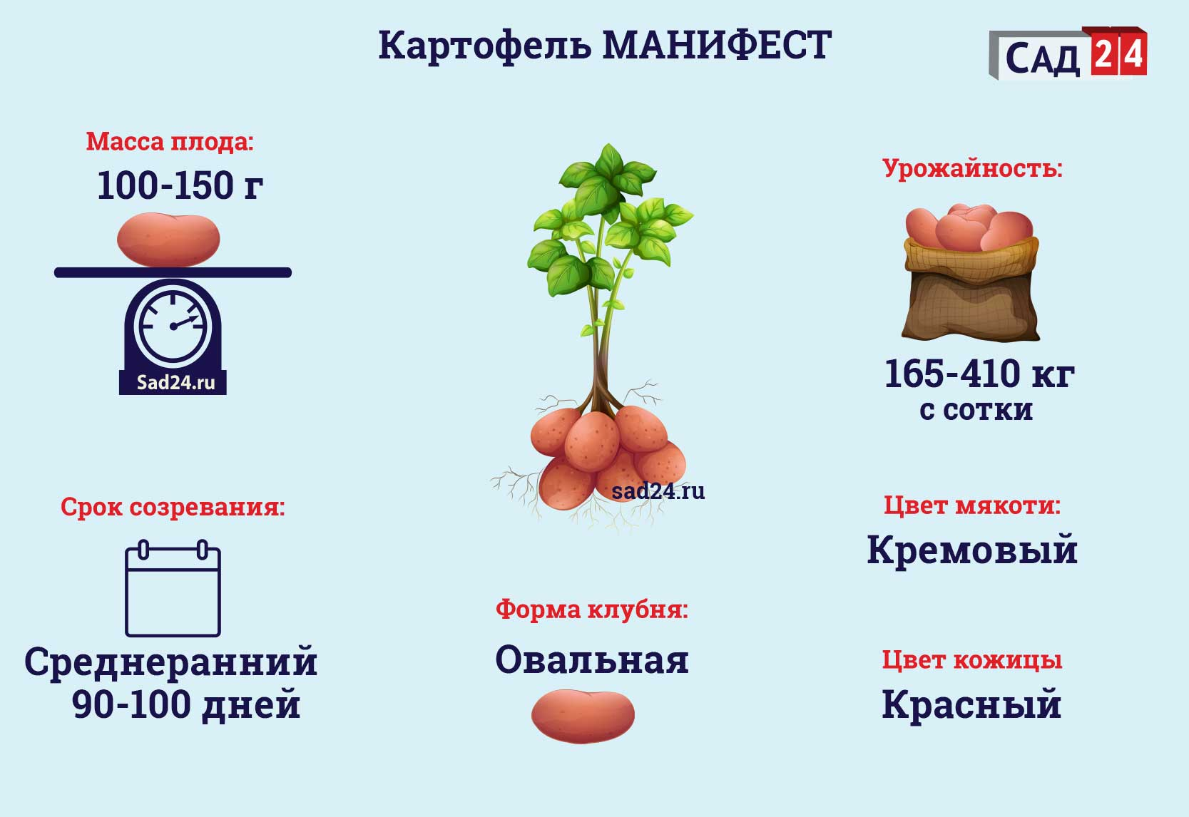 Манифест https://sad24.ru/