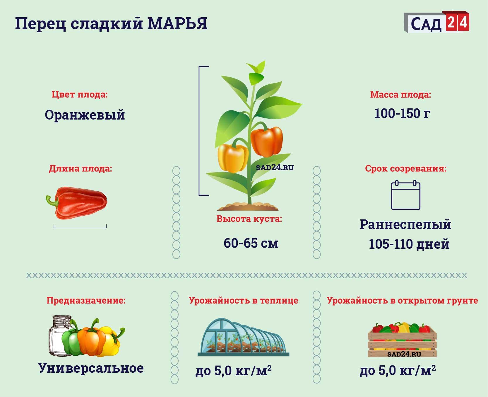 Марья - https://sad24.ru