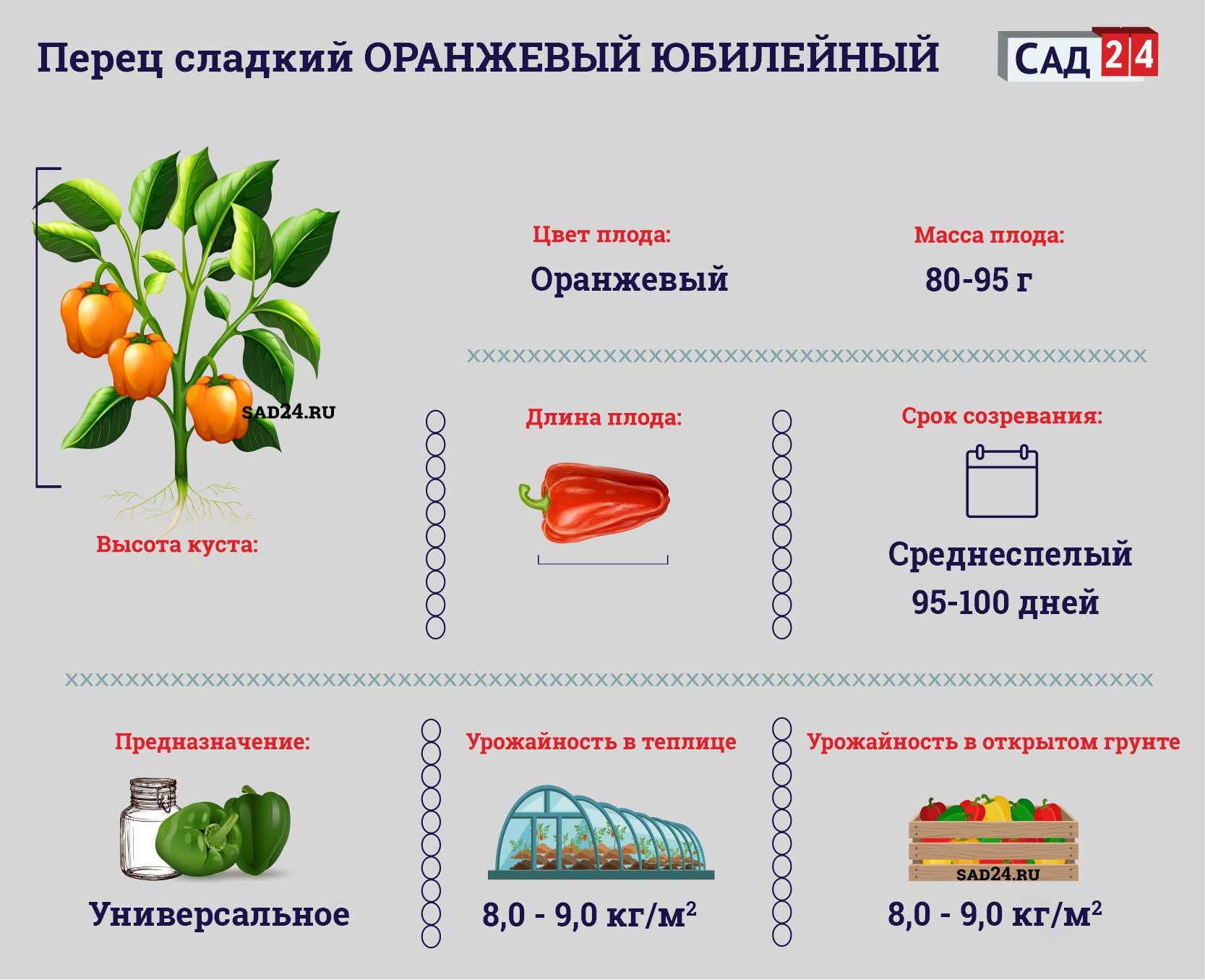 Оранжевый юбилейный https://sad24.ru/