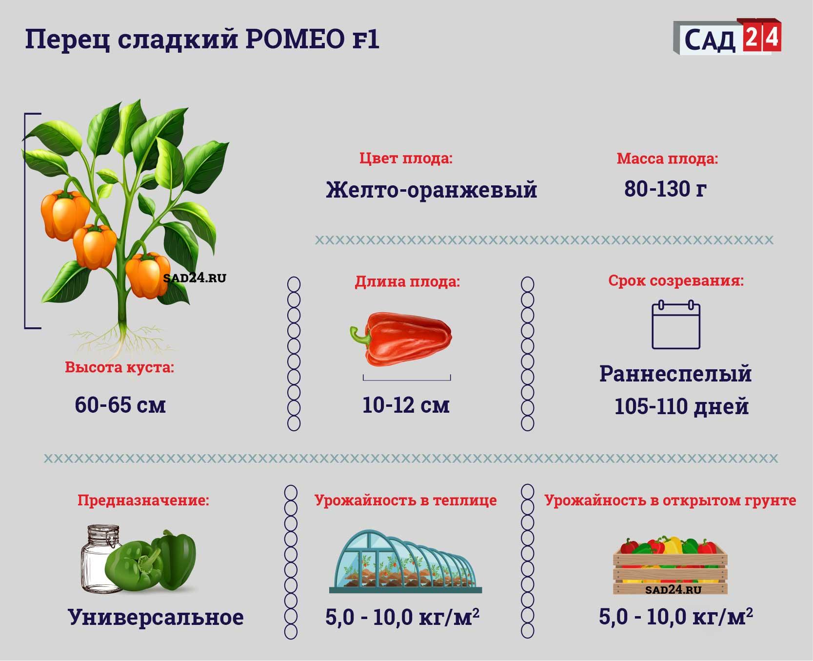 Ромео F1 - https://sad24.ru