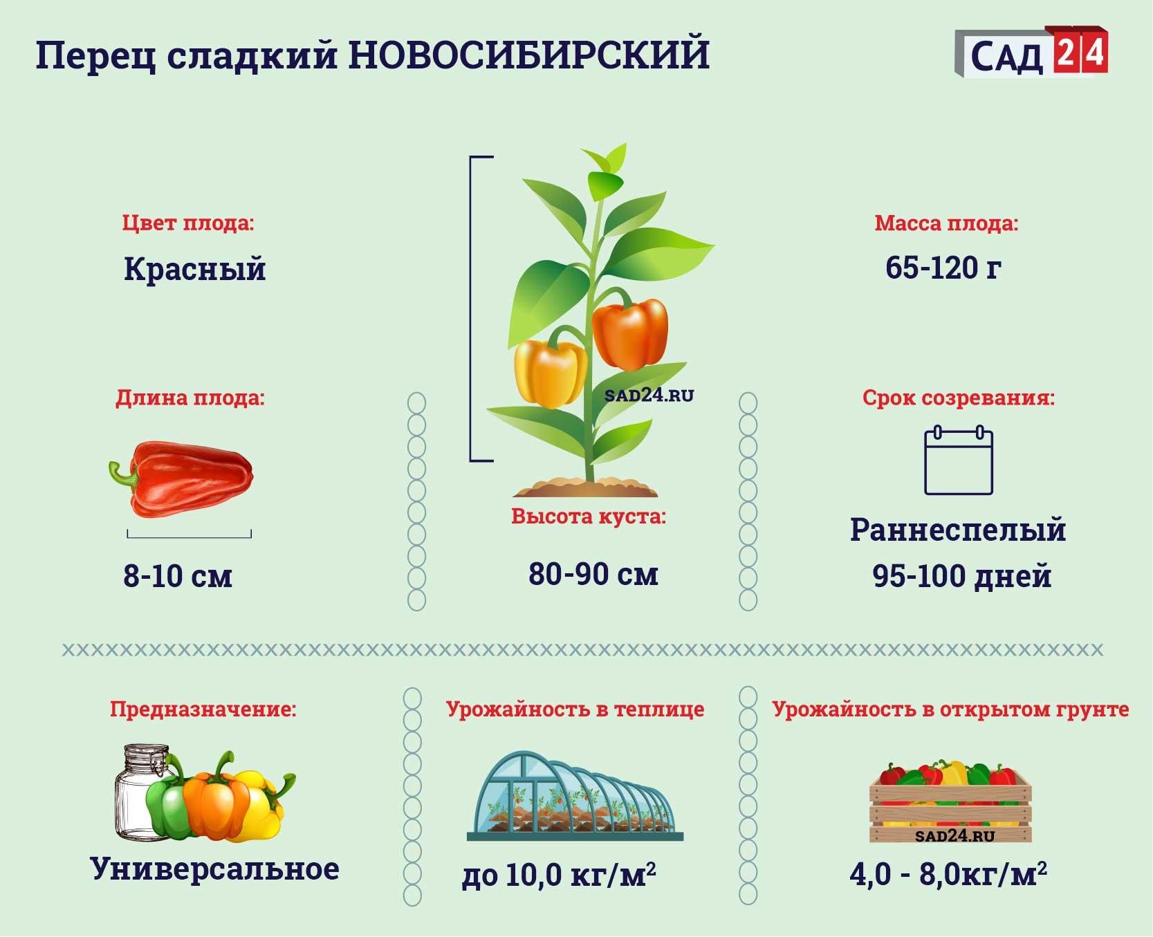 Новосибирский - https://sad24.ru