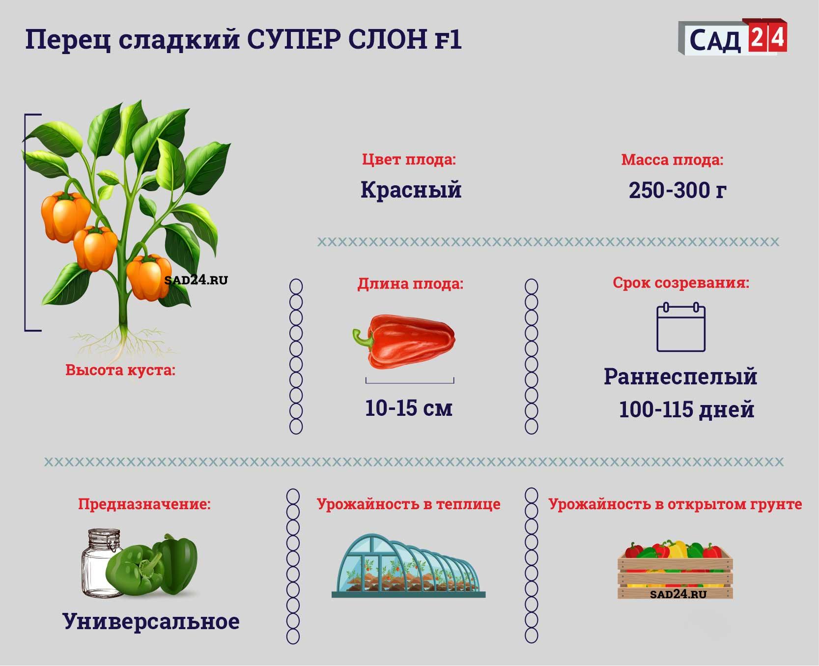 Супер Слон F1 https://sad24.ru