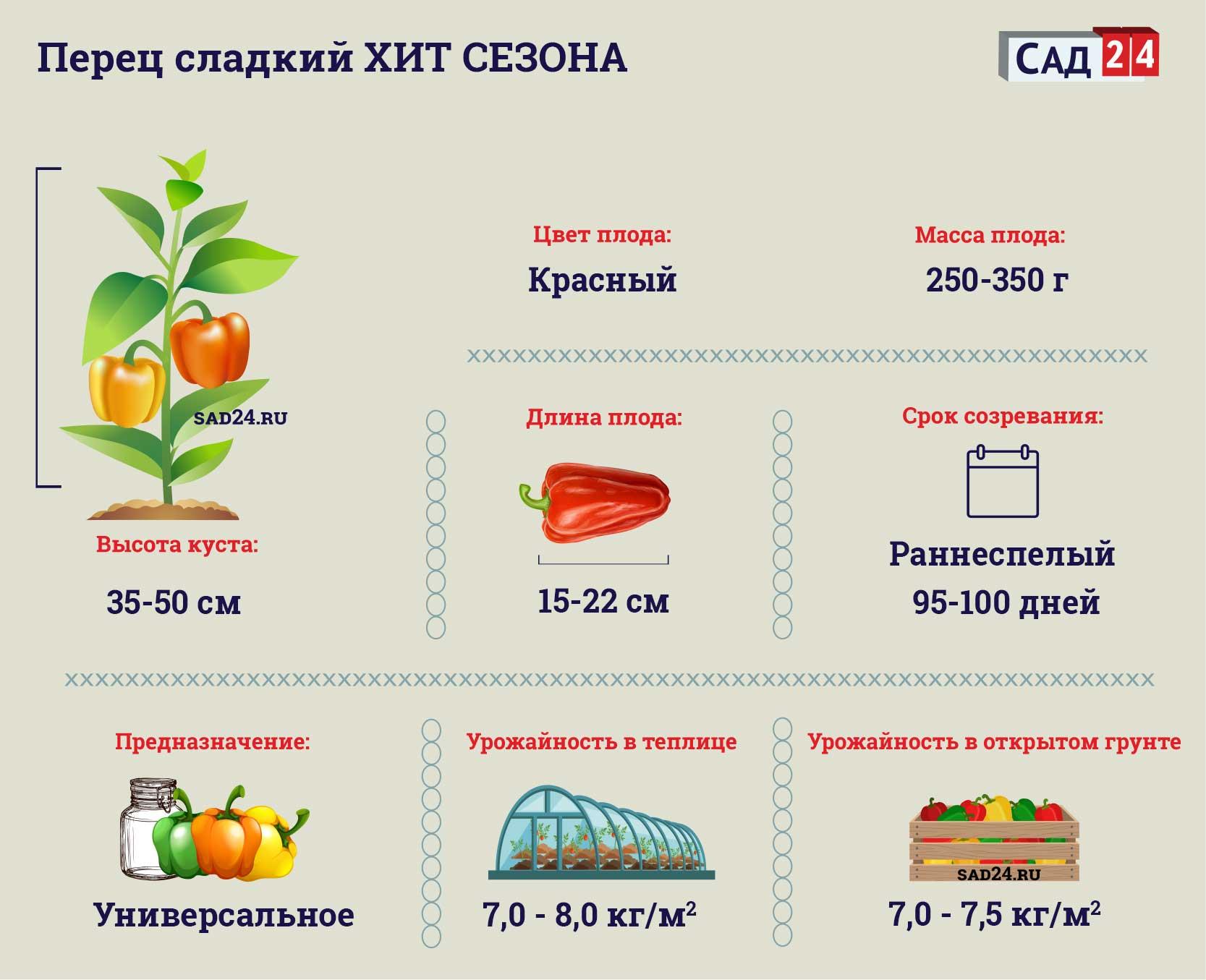 Хит сезона https://sad24.ru