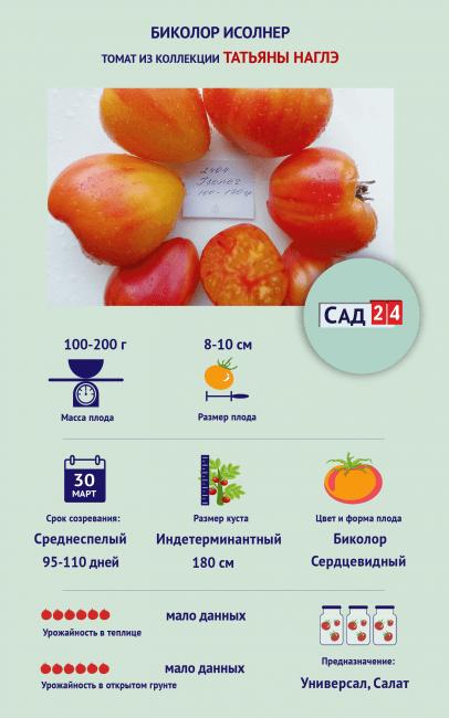 """Инфографика Томат """"Биколор Исолнер"""""""