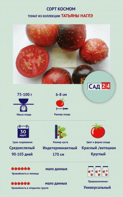 """Инфографика Томат """"Космос"""""""