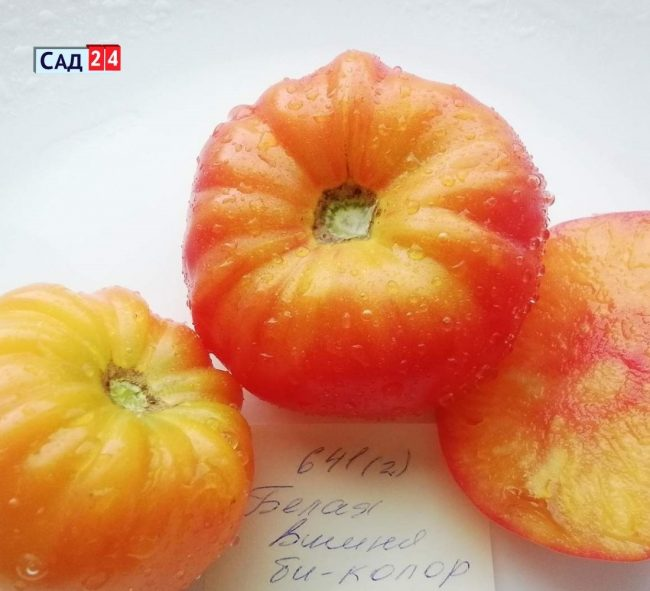 Топ 10 томатов Татьяны Наглэ