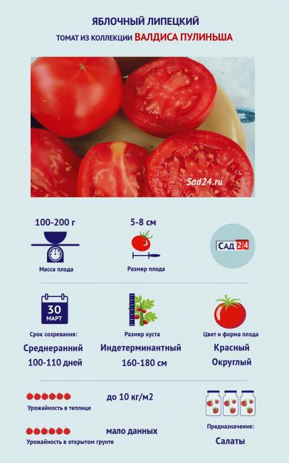 Томат Яблочный Липецкий