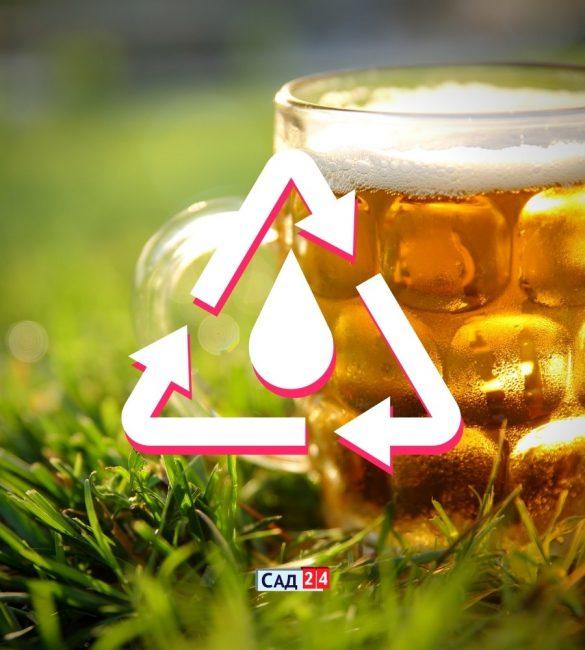 6 необычных способов использования пива в саду