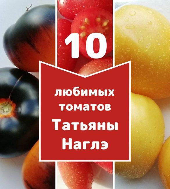 10 любимых томатов от коллекционера Татьяны Наглэ