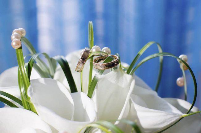 Каллы - популярные свадебные цветы