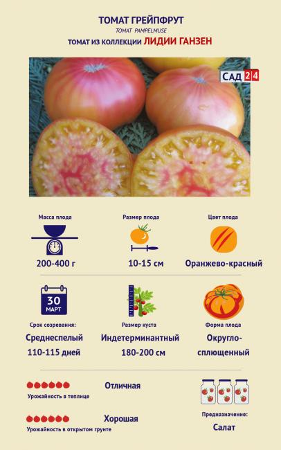 Томат Грейпфрут Лидии Ганзен
