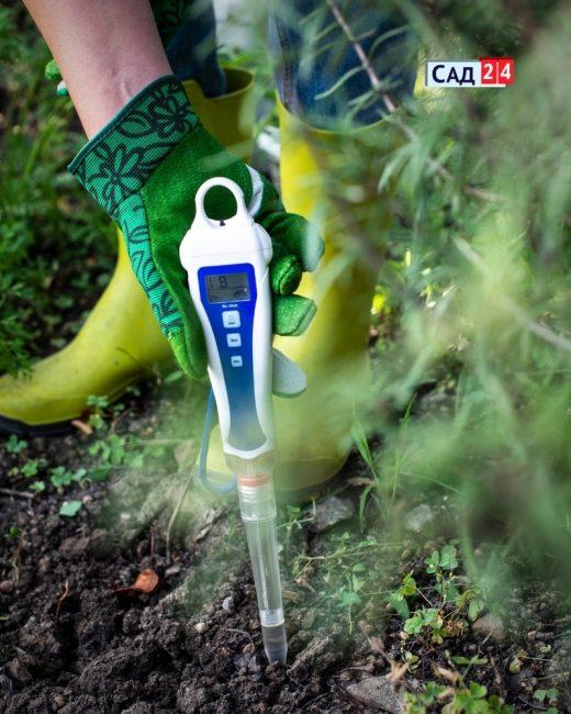 тестер pH в саду
