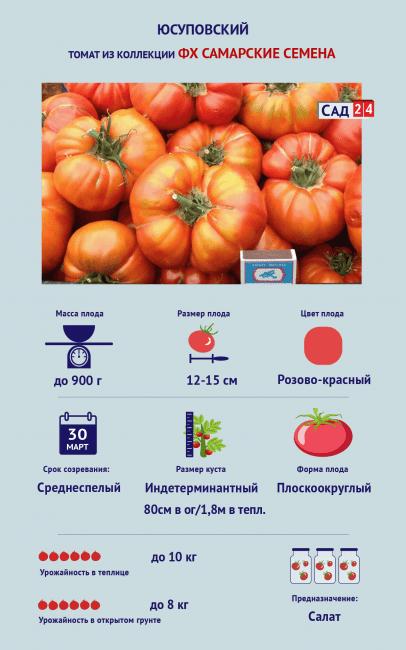 Томат «Юсуповский»