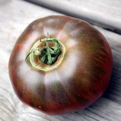 лопаются томаты в теплице