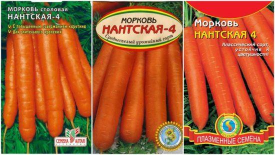 морковь нантская